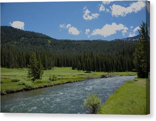 Soda Butte Creek Canvas Print