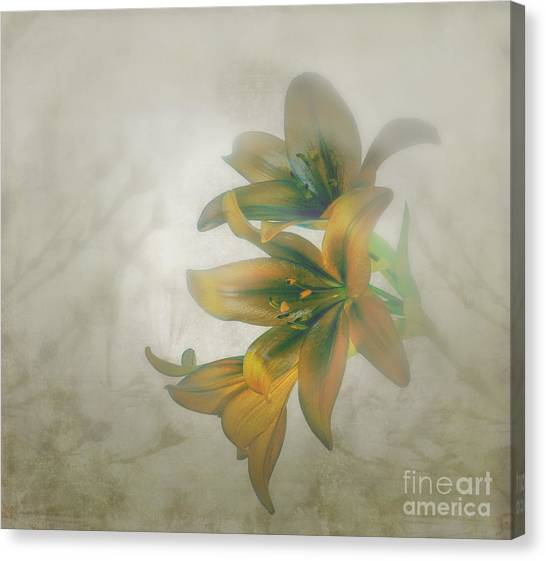 Soft And Sweet Canvas Print