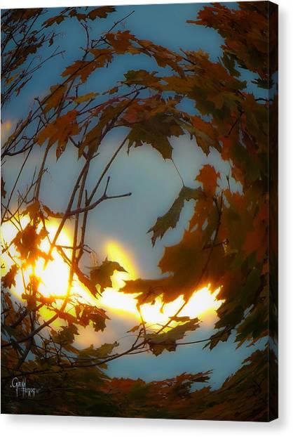 Soft Autumn Dawn Canvas Print
