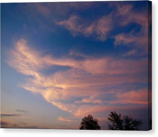 Soft Pink Clouds Canvas Print by Virginia Forbes