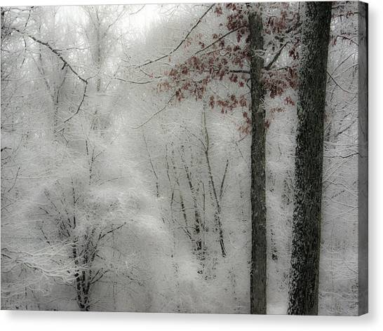 Soft Snow Canvas Print