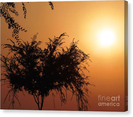 Soft Sunrise Canvas Print