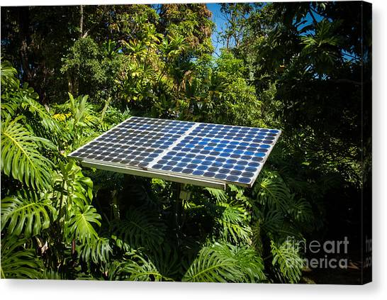 Solar Panel In Jungle Canvas Print