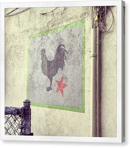Roosters Canvas Print - #solfood #sanrafael #ca #wall #rooster by Emily Sheridan