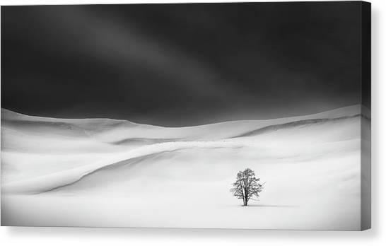 Solitude Canvas Print by Huibo Hou