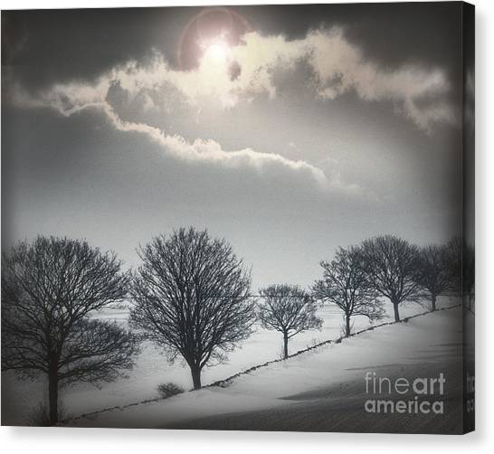 Solitude Of Coldness Canvas Print