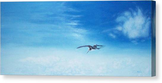 Solo Flight Canvas Print by Mike Durco