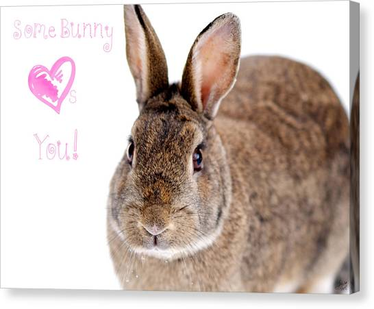 Easter Bunny Canvas Print - Some Bunny Loves You by Lisa Knechtel