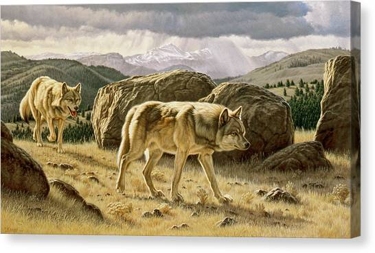 Yellowstone Canvas Print - Something On The Wind by Paul Krapf