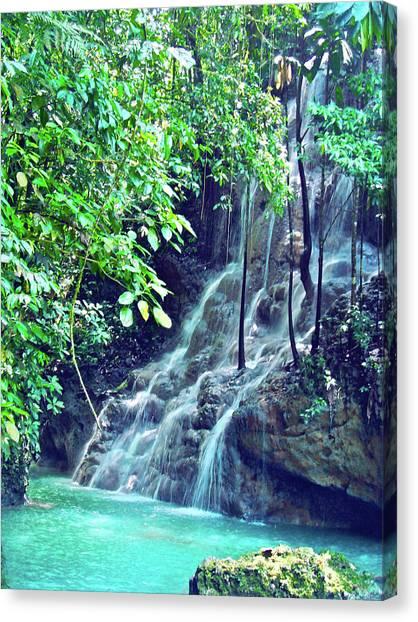 Colorado Rapids Canvas Print - Sommerset Falls Jamaica by Carey Chen
