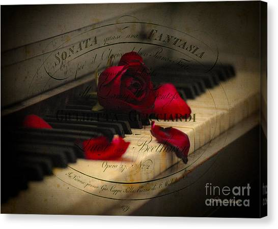 Sonata In Roses Canvas Print