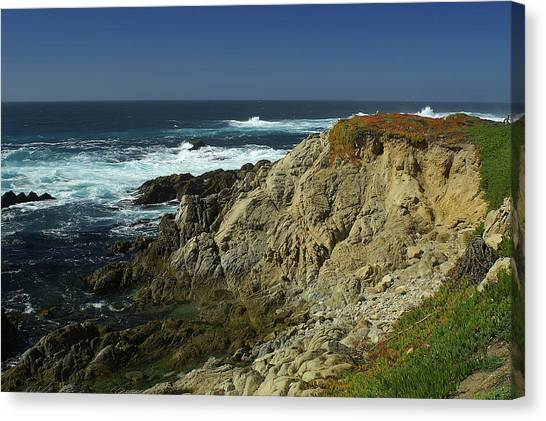 Sonoma Coast 1 Canvas Print
