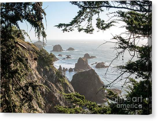 Sonoma Coast 2.2795 Canvas Print by Stephen Parker