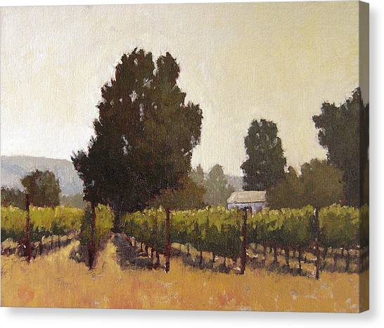 Robert Frank Canvas Print - Sonoma Vineyard by Robert Frank