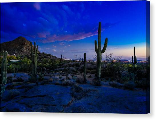 Golf Course Canvas Print - Sonoran Desert Saguaro Cactus by Scott McGuire