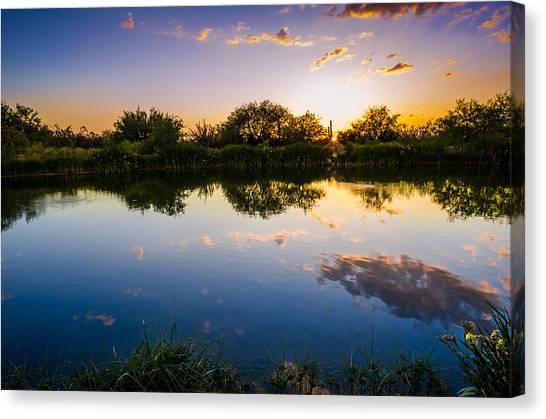Desert Sunsets Canvas Print - Sonoran Desert Sunset Reflection by Scott McGuire