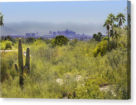 Sonoran Desert With Phoenix Skyline Canvas Print