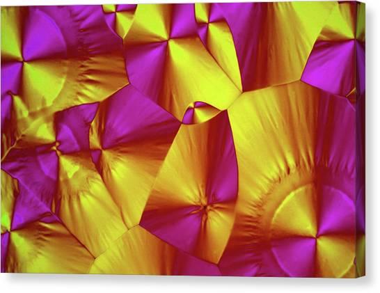 Sorbitol Crystals Canvas Print by John Durham