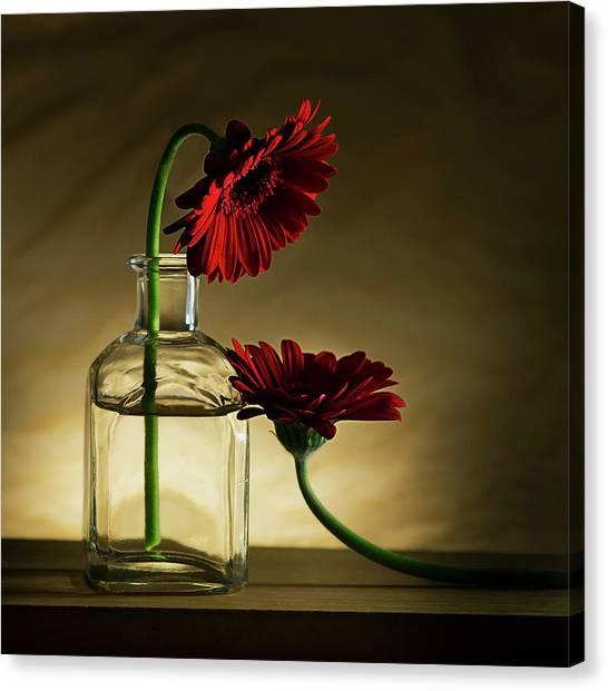 Romantic Flower Canvas Print - Sorry, Full... by Wieteke De Kogel