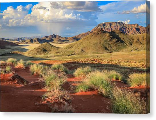 Sossulvei Namibia Afternoon Canvas Print