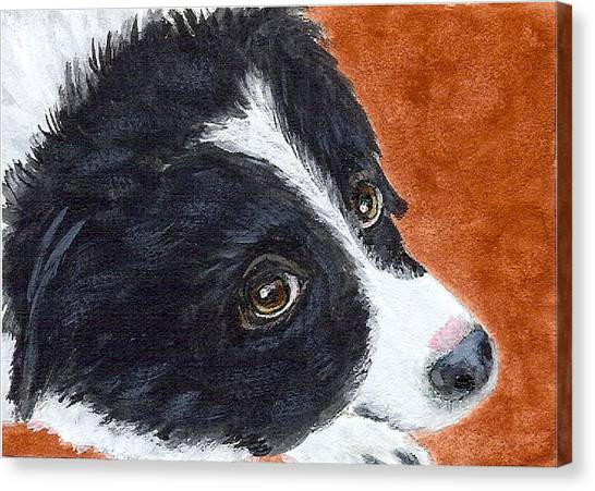 Soulful Eyes Canvas Print
