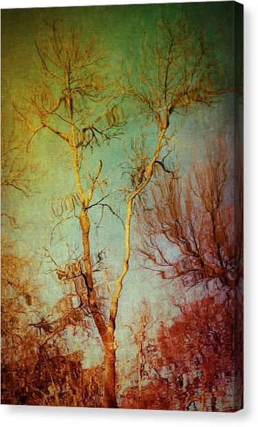 Souls Of Trees Canvas Print