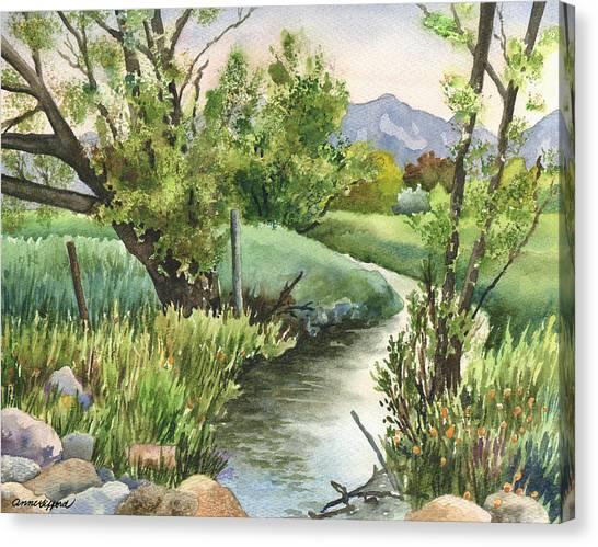 Ditch Canvas Print - South Boulder Creek by Anne Gifford