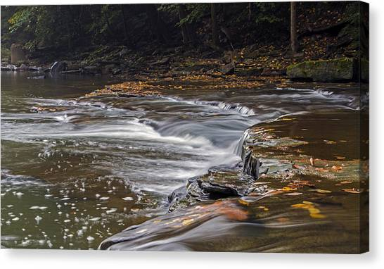 South Chagrin Reservation Creek Canvas Print