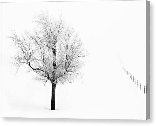 South Dakota Winter Canvas Print