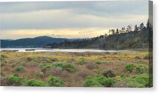 South Humboldt Bay Canvas Print