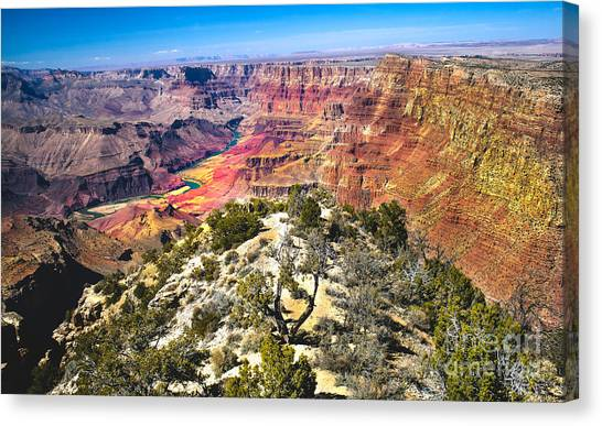 South Rim From The Butte Canvas Print