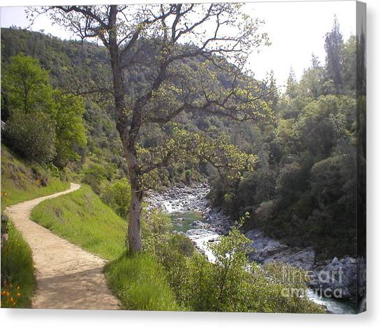 South Yuba Trail Canvas Print
