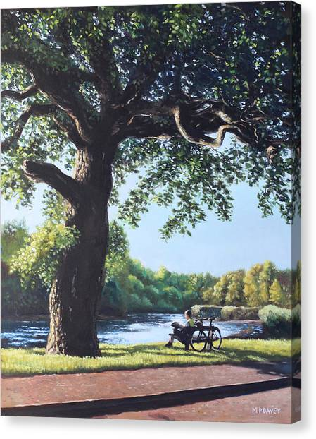 Southampton Riverside Park Oak Tree With Cyclist Canvas Print