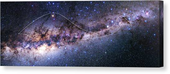 Emus Canvas Print - Southern Milky Way by Babak Tafreshi