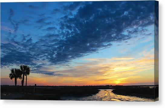 Southern Sky Canvas Print by Lisa Campbell