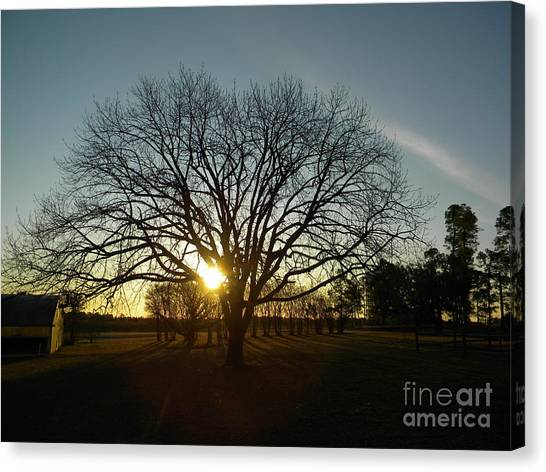 Southern Sunrise Special Canvas Print
