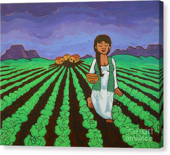 Sowing Canvas Print
