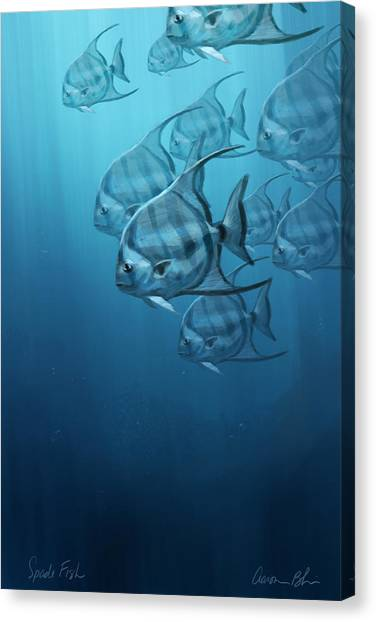 Fish Canvas Print - Spade Fish by Aaron Blaise