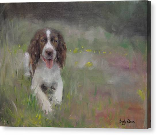 Spaniel At Rest Canvas Print