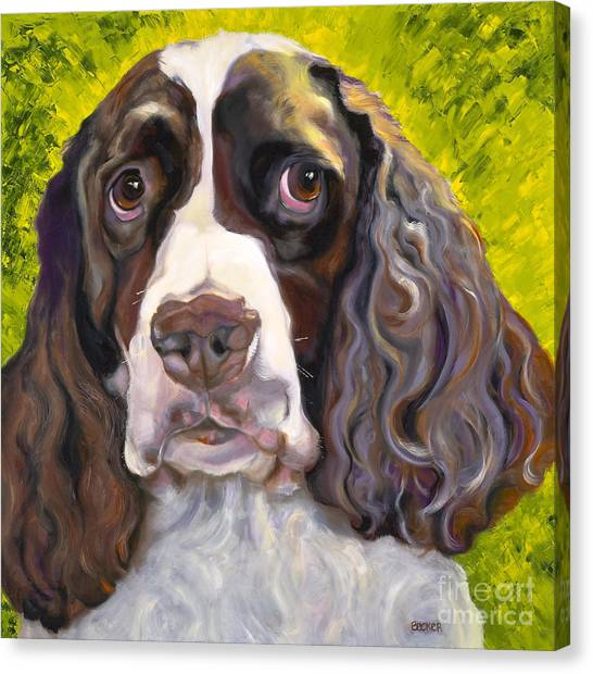 Spaniel The Eyes Have It Canvas Print