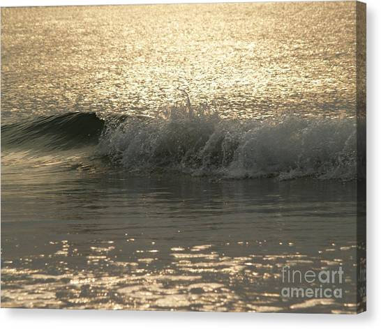 Sparkling Sea In Hunting Island Dawn Canvas Print