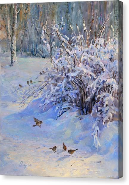 Sparrow On Snow Canvas Print