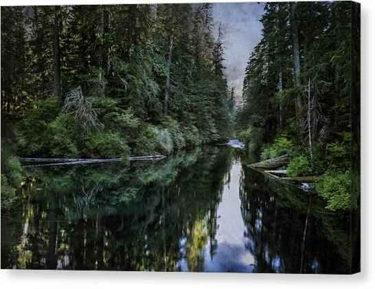 Canvas Print featuring the photograph Spawning A River by Belinda Greb