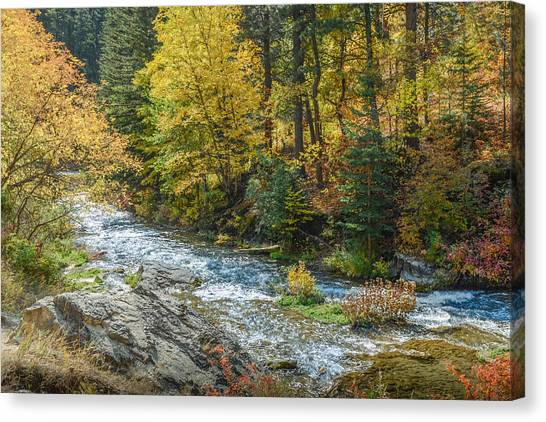 Spearfish Creek Autumn Canvas Print