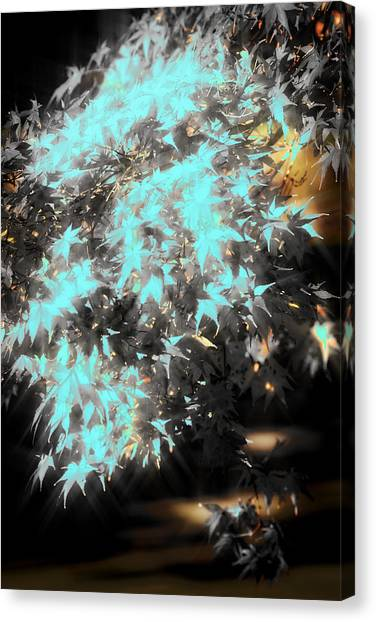 Special Leaves Canvas Print by Kellice Swaggerty