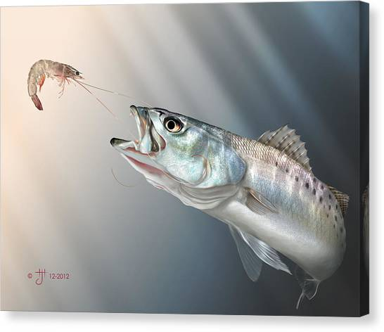 Shrimping Canvas Print - Speck Snack by Hayden Hammond