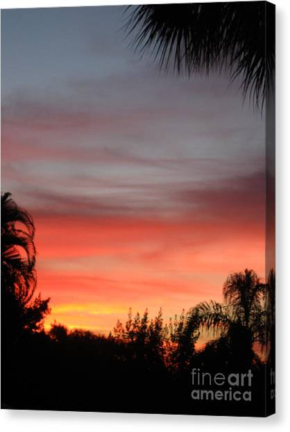 Spectacular Sky View Canvas Print