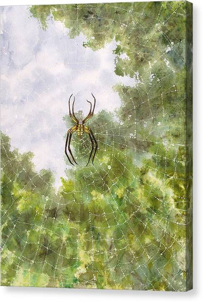 Spider In Web #2 Canvas Print