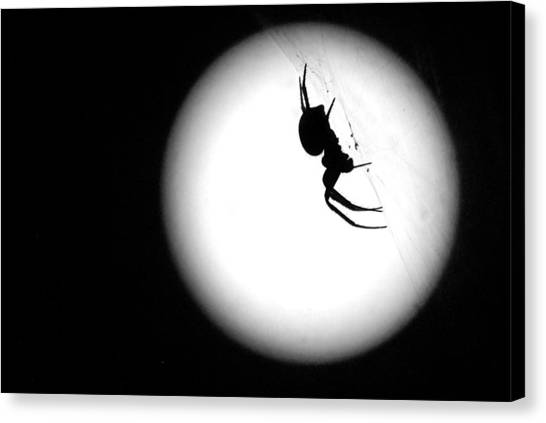 Spider Moon Canvas Print