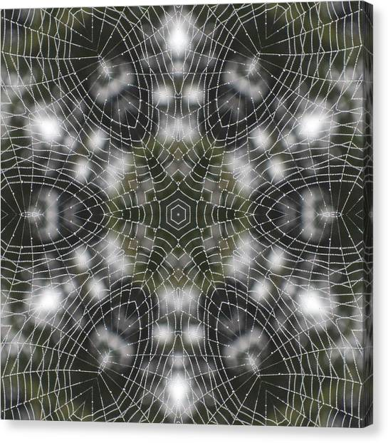 Spiderweb In Black Canvas Print